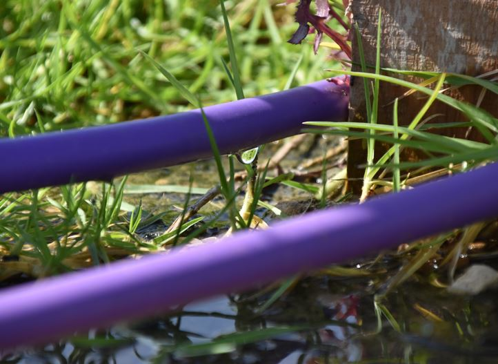 Pipe Reclaimed water